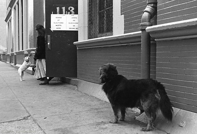 Voting on 3rd Street November, 1980