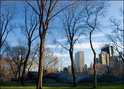 Central Park, January 2007