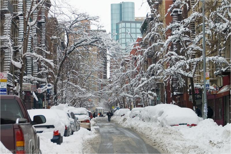 ON the Street Where I live  - January 27th 11:00 am