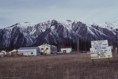 along the alcan 1989