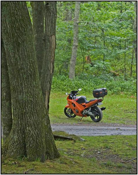 Mat's bike