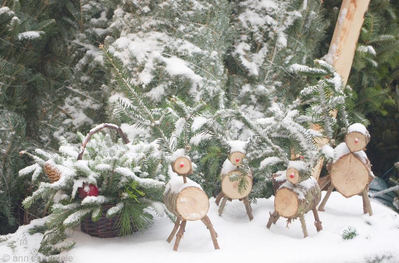 spruce reindeer - chirstmas tree sale in NYC