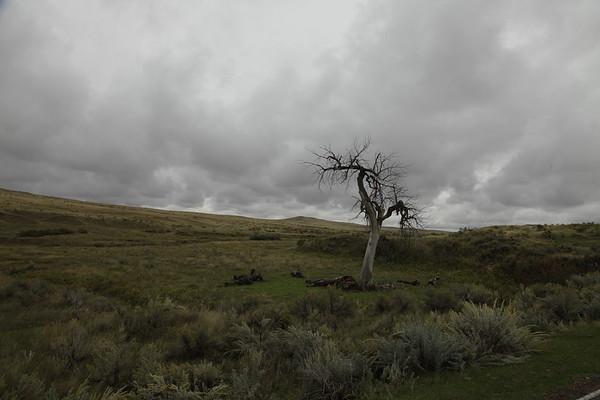 20130927_Little Bighorn_0025