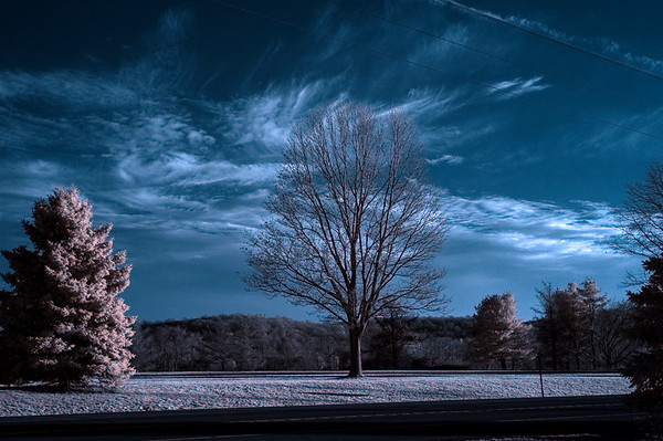 Sky (Color Infrared)