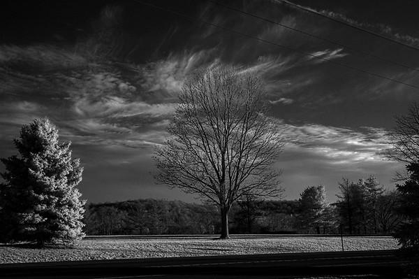 Sky (Black & White Infrared)