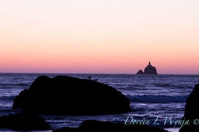 Ecola State Park_047