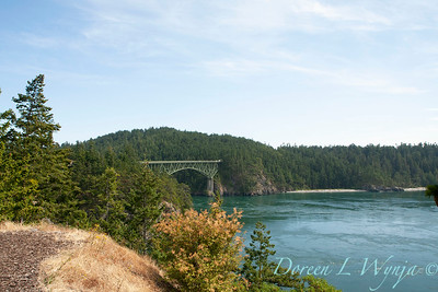 Deception Pass bridge_041