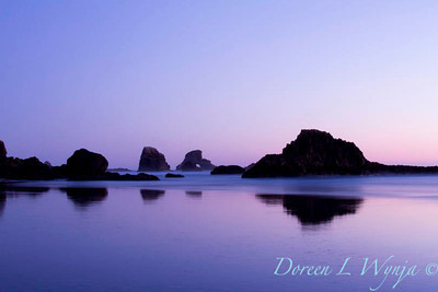 Ecola State Park_066
