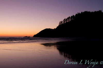 Ecola State Park_061