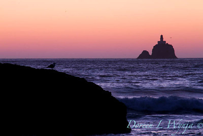 Ecola State Park_051