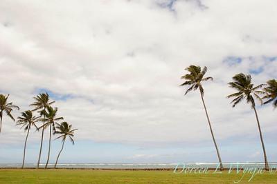 Kualoa Regional Park Hawaii_4251