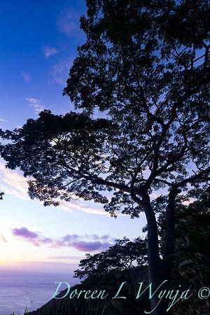 Hawiian sunset - Captain Cook area_4474