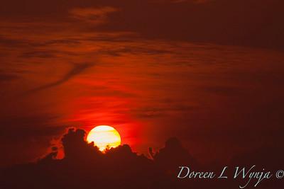 Red Sunset_057