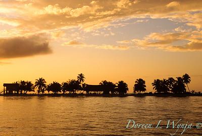 Desert Island_096