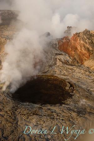 Mt Kilauea Volcano_026
