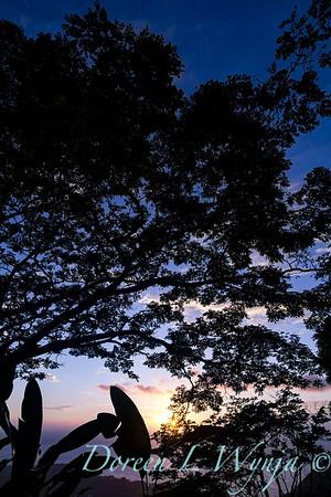 Hawiian sunset - Blue Hawaii_4454