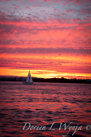 Sailing into the sunset_8088