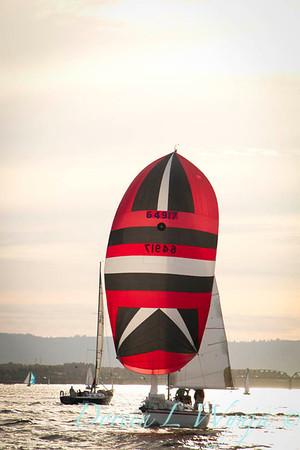 Spinnaker sailing_7995