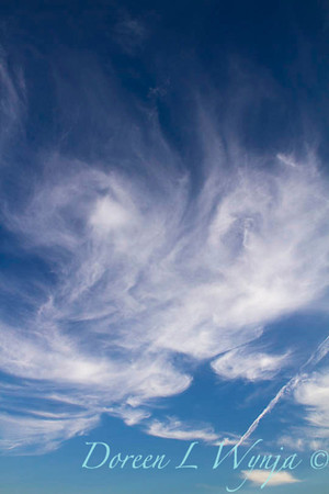 Sky of Clouds_8035