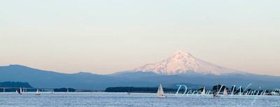 Mt Hood on the Columbia_8047