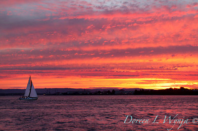 Sailing into the sunset_8086