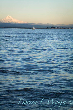 Mt Hood on the Columbia_8030