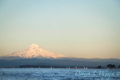 Mt Hood on the Columbia_8038