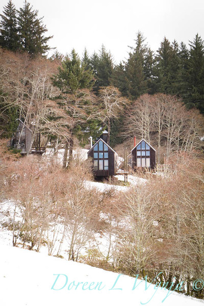 Sitka cabins_004