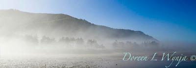 Yachats Oregon Coast_011