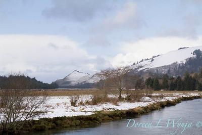 Cascade Head in snow_012