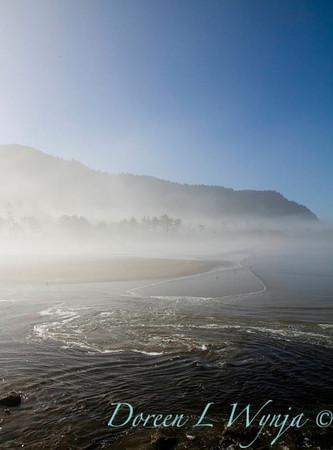 Yachats Oregon Coast_014
