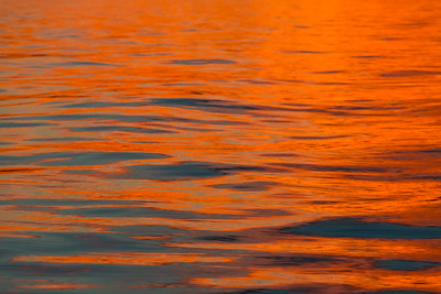 Orange Bright Sea