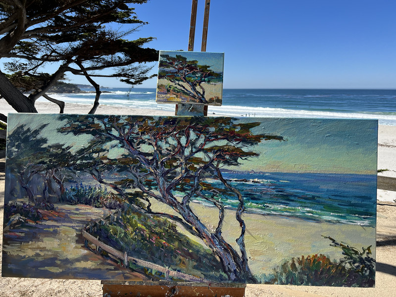 Beautiful day in Carmel working a 25x50 plein alr that I started couple of weeks ago.  I also did a small painting of this beautiful tree this morning. This studio is priceless 🤗