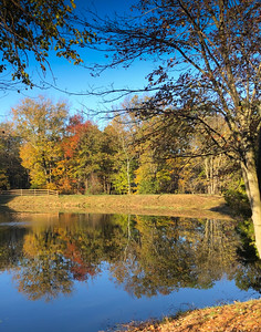 Fall Morning at Sarah's Pond