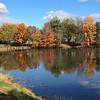 Fall at Sarah's Pond