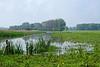 Schouwendijk, Munnikenland