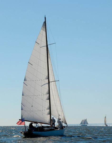 Schooner Witchcraft sailing Chesapeake Bay by Bill McAllen_D301210
