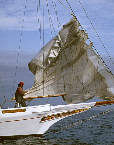 Crew stows foresail on Skipjack Nellie Byrd by Bill McAllen
