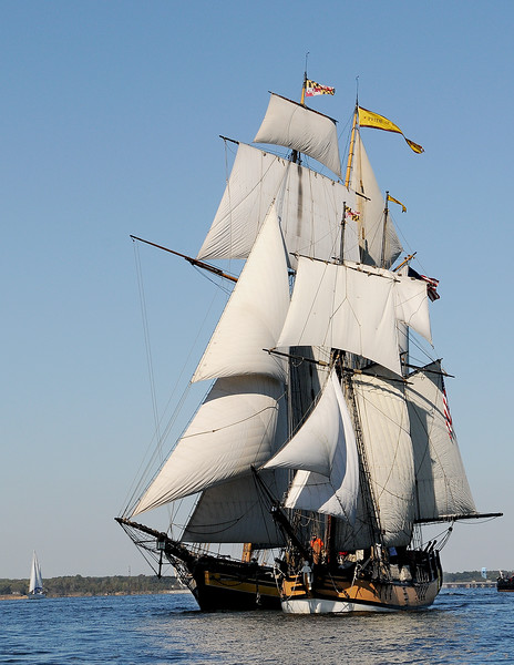 Pride Of Baltimore ll and Sultana Sail Near Annapolis Maryland By Bill McAllen_D301653