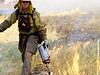 (Boulder 2003) -Boulder wildland fire fighter lights a burn out operation.<br /> Photo: Michael Rieger