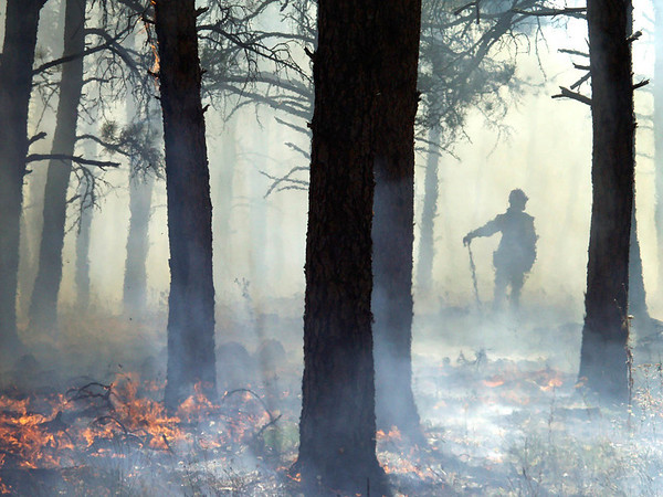 (September 2004 Boulder, Colorado) -- Boulder fire fighter watches  a prescribed burn.  That was set to get ready for the 2004 fire season.<br /> Photo Michael Rieger/ZUMA