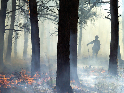 (September 2004 Boulder, Colorado) -- Boulder fire fighter watches  a prescribed burn.  That was set to get ready for the 2004 fire season. Photo Michael Rieger/ZUMA