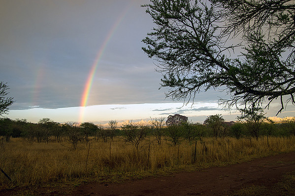 A Rainbow After the Storm (6 Photographs)