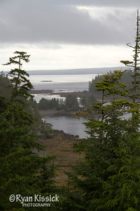 View from the bluffs of Langara Island