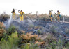 Lakeside Fire_0432