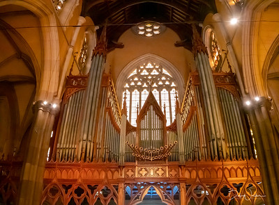 View of Organ in St. Patrick's Cathedral