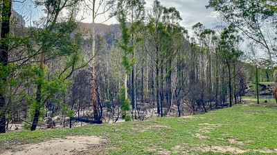 Some of the devastation caused by fires in the Wolgan Valley