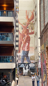 Some of the street art in Melbourne