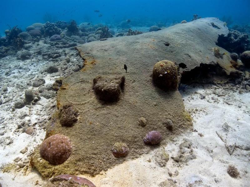 Crash site, Curacao, Netherlands Antilles
