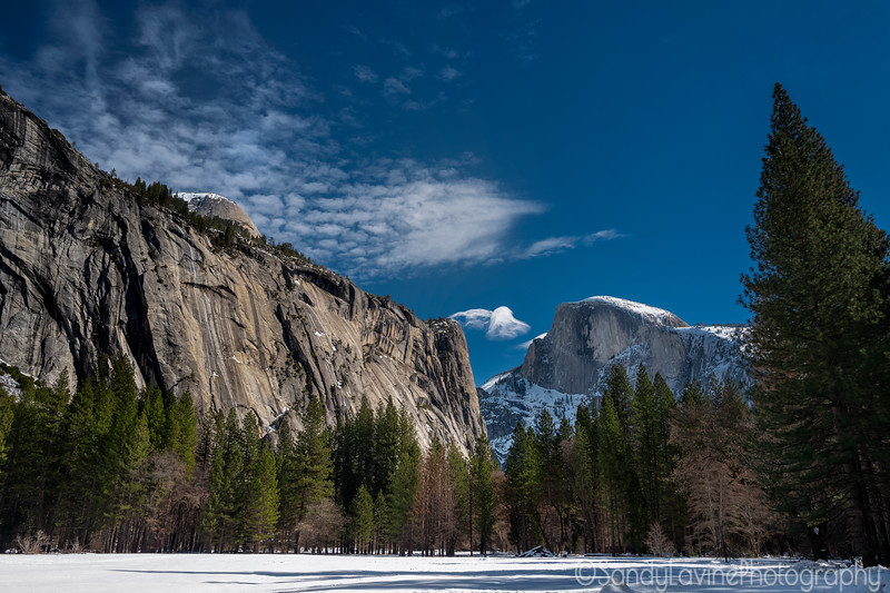 Snowy Half Dome From The Valley Floor